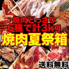 食べるぞ焼肉夏祭りセット合計3kg大ボリューム!色々な焼肉を一度に楽しめる!製造者だから可能としたパフォーマンス(冷凍)[詰め合わせ/セット/焼肉/BBQ/バーベキュー]【smtb-td】