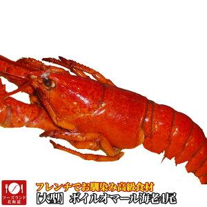 【送料無料】ボイルオマールロブスター(オマールエビおまーるえび)Lサイズ約400g前後4尾[えび/海老/蝦][高級食材]