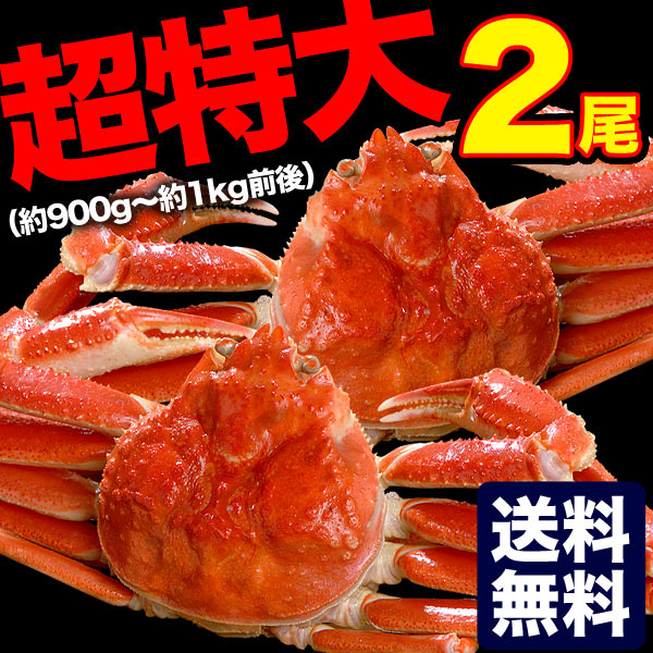 超特大ズワイガニ姿約900g〜1kg前後×2尾【送料無料】(脚折れ込み)(ボイル加熱済み)(冷凍)[ずわいがに/かに/カニ/蟹]
