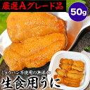 【無添加】生食用生ウニ50gペルー産(先進冷凍技術で解凍しても美味しさGOOD)(冷凍)[うに/雲丹]