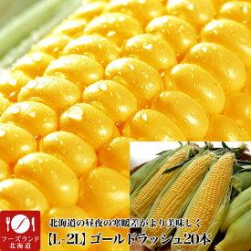 【早割】とうもろこし 黄粒ゴールドラッシュ 20本 L〜2L 北海道産[とうきび スイートコーン][正規品][8月下旬前後頃より収穫次第ご注文順に出荷]