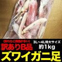 訳ありB品★破★ズワイ脚約1kg前後(ボイル加熱済み)(冷凍)[ずわいがに脚/かに/カニ/蟹][同梱推奨]