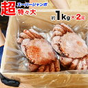 毛ガニ 1kg前後×2尾 超特々大スーパージャンボ 毛蟹