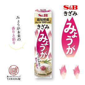 きざみ みょうが 38g 1個 チューブ エスビー 調味料 薬味 ペースト SB S&B ヱスビー食品 粘体 ねり S&B きざみシリーズ