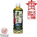 【2ケースセット】 綾鷹 濃い緑茶 PET 525ml 48本(24本×2箱) お茶 ペットボトル 日本コカ・コーラ 正規代理店