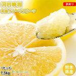 河内晩柑文旦みかん訳あり送料無料和製グレープフルーツ1.5kgS〜3L2セットで1セット3セットで3セットおまけ晩柑熊本県産美生柑グレープフルーツ