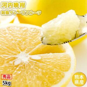 河内晩柑 文旦 みかん 送料無料 秀品 5kg M〜2L 和製グレープフルーツ お取り寄せ お取り寄せグルメ 熊本県産 ジューシーオレンジ 美生柑