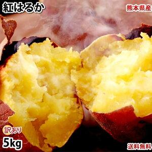 さつまいも 紅はるか べにはるか 訳あり 5kg 送料無料 熊本県産 お取り寄せ サツマイモ 紅蜜芋 焼き芋 芋 いも