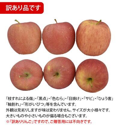 りんご訳あり約5kg(4.5〜5kg)リンゴ送料無料長野・青森県産サンふじつがるジョナゴールドふじ林檎