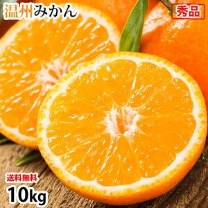 みかん 10kg 送料無料 温州みかん 秀品 熊本県産 蜜柑 ミカン フルーツ お取り寄せ