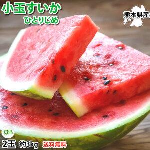 スイカ 小玉すいか ひとりじめ 送料無料 秀品2玉 約3kg 熊本県産 お取り寄せ すいか 西瓜 フルーツ