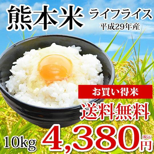 米 熊本米 送料無料 10kg ライフライス 熊本県産100% お米 こめ コシヒカリ ヒノヒカリ 森のくまさん