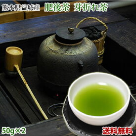 茶 送料無料 芽折れ茶 50g×2 肥後茶 熊本県益城産 お茶 日本茶