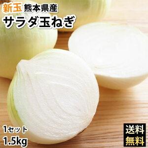 玉ねぎ サラダ玉ねぎ 送料無料 新玉 1.5kg S〜L 熊本県産 2セットで1セットおまけ 3セットで3セットおまけ お取り寄せ お取り寄せグルメ 玉葱 たまねぎ 野菜
