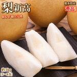 梨送料無料新高秀品約3kg5〜8玉熊本県産お取り寄せフルーツナシなし豊水秋月