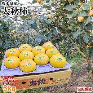 太秋柿 柿 送料無料 秀品3kg 8〜14玉入り 熊本県産 太秋 たいしゅうがき かき カキ