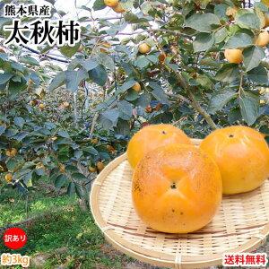 太秋柿 柿 訳あり 送料無料 約3kg 熊本県産 太秋 たいしゅうがき 甘柿 かき カキ