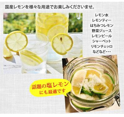 レモン国産レモン送料無料熊本県産4kgS〜L3箱購入で1箱おまけ減農薬防腐剤ワックス不使用れもんグリーンレモン国産
