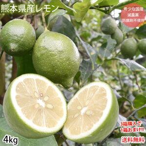 レモン 国産レモン 送料無料 4kg S〜L 3箱購入で1箱おまけ 熊本県産 減農薬 防腐剤ワックス不使用 お取り寄せ れもん グリーンレモン 国産