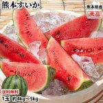 スイカすいか送料無料熊本すいか秀品1玉約4kg〜5kg熊本県産西瓜フルーツ