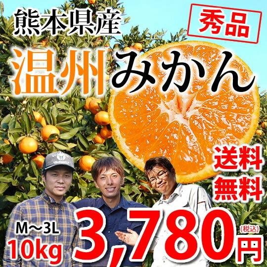 みかん 送料無料 温州みかん 秀品 10kg M〜3L 熊本県産 蜜柑 ミカン