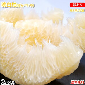 晩白柚 みかん ばんぺいゆ 訳あり 送料無料 約3kg〜4kg 2玉入 M〜2Lサイズ 世界最大級の柑橘 熊本県八代産 蜜柑 ミカン