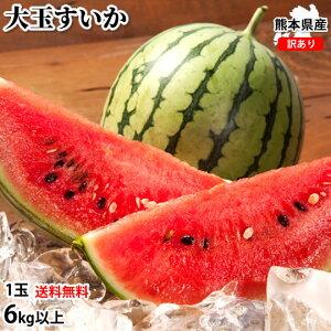 大玉すいか 6kg以上 すいか 訳あり 送料無料 1玉 L〜3L 熊本すいか お取り寄せ スイカ 熊本県産 すいか 西瓜 フルーツ
