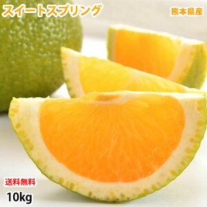 スイートスプリング 10kg みかん 送料無料 訳あり 熊本県産 爽やかな甘さと香り 蜜柑 温州みかん 八朔 お取り寄せ フルーツ