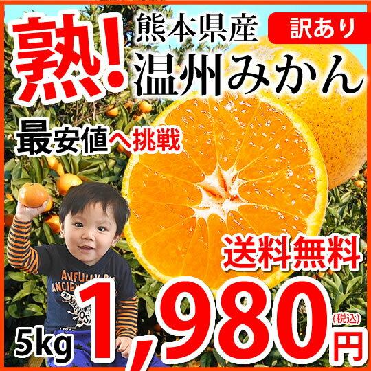 みかん 送料無料 訳あり 温州みかん 5kg L〜3L 熊本県産 熊本みかん 蜜柑 ミカン