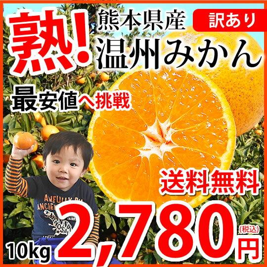 みかん 送料無料 訳あり 温州みかん 10kg L〜3L 熊本県産 熊本みかん 蜜柑 ミカン