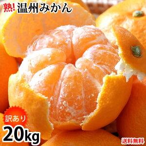 みかん 20kg (10kg×2) 訳あり 温州みかん 送料無料 熊本みかん 熊本県産 蜜柑 ミカン