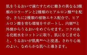 フラビアコンセントレートローション【集中化粧水】