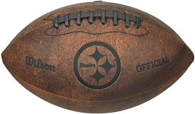 NFLヴィンテージフットボール Gulf Coast Sales 9インチスローバック