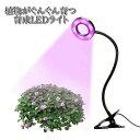 植物 ライト LED クリップ式 USB充電 観葉植物 多肉植物 おしゃれ インテリア 育成 成長促進 ランプ 光合成 日光 光 …