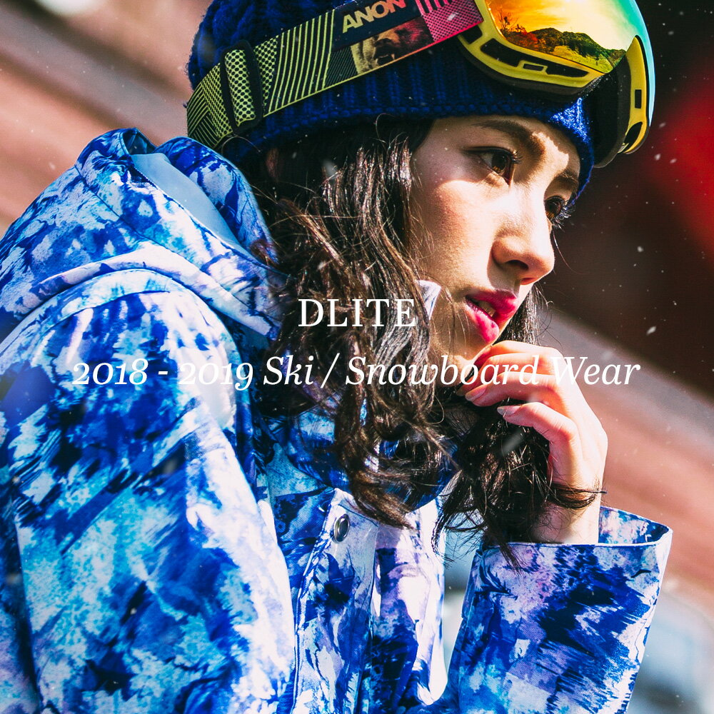 スノーボードウェア レディース スキーウェア 上下 セット DLITE 新作 スノボウェア スノーボード ウェア スノボ ボードウェア 大きいサイズ 2018-2019 送料無料
