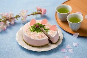 数量限定 【定期購入お試し】 4月商品 単品 桜のムースケーキ 4号 冷凍ケーキ さくら サクラ 花見 父の日 母の日 こどもの日 もち 春 ギフト お茶 お買い得