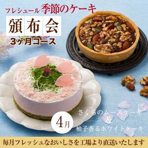 季節のケーキ 4号サイズ 2個セット 定期購入【3ヶ月コース】冷凍便 送料無料 タルト/ムース/パウンド/チーズケーキ