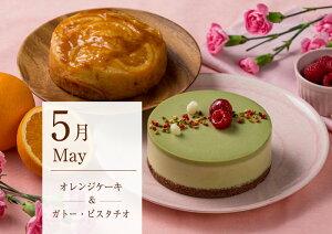 5月1日より随時発送開始 送料無料 フレシュールブランド定期購入 お試し 5月商品 オレンジケーキ ガトー・ピスタチオ 4号 ホールケーキ2個 冷凍ケーキ 2種 お得 おれんじ 春
