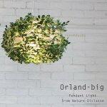 ディクラッセグリーンペンダントライトオーランドビッグOrland-big葉っぱリーフデザインナチュラルかわいいおしゃれランプ引掛けシーリング対応LED対応セットでうふふ対応インテリア照明フレッヒダックス送料無料代引き手数料無料