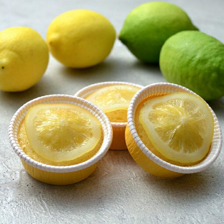 【フレデリック・カッセル】ケーク レモン6