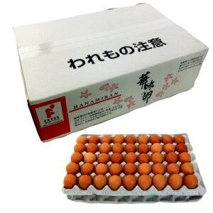 【送料無料】華味卵(はなみらん)5Kg箱 (約75個)