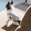 【犬服】【ドッグウェア】ワイドボーダーラガーシャツ犬服おしゃれシャツ高級シンプルラガーシャツいぬ洋服ウェアドッグ