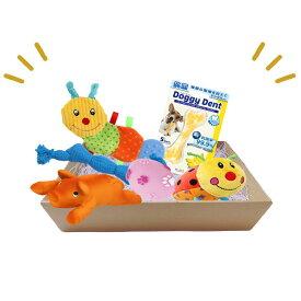 犬 おもちゃ セット ぬいぐるみ ギフト プレゼント チワワ 小型犬 おもちゃの詰め合わせ BOX おもちゃボックス