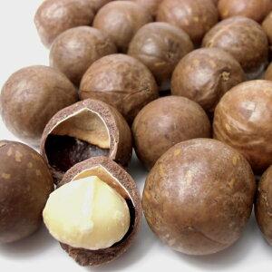 殻付きマカダミアナッツ (ロースト) 900g【殻割り器とは同梱不可】【メール便送料無料】