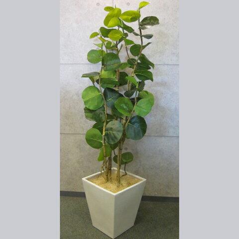 [中古]★モデルルーム展示品★フェイクグリーン鉢(幅350mm)付高さ1710mm