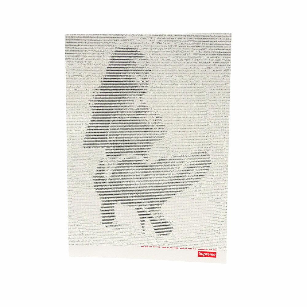 SUPREME(シュプリーム) Digi Sticker (ステッカー) WHITE 290-004381-119+【新品】