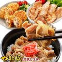 生姜焼き メンチカツ 豚丼の具 惣菜 お試しセット NS-V | 食品 お取り寄せグルメ セット 冷凍食品 お肉 肉 惣菜 おか…