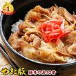 【豚丼丼冷凍10袋】銀座やまと監修豚丼の具110g10パック