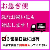 【お急ぎ便】商品と同時購入で3営業日後に出荷します。
