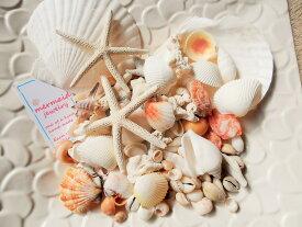 天然素材 A品 ヒトデ ホタテ サンゴ 色々な貝殻セット 350gパック ハワイインテリア 工作材料